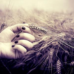 erboristeria-naturalmente-grano
